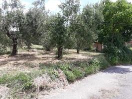 Via Casilina